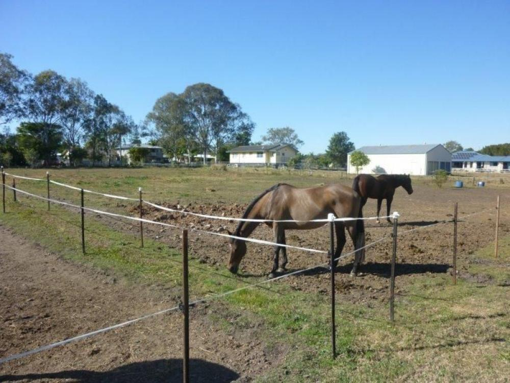 HORSE LOVERS – 7 ACRES – SHED