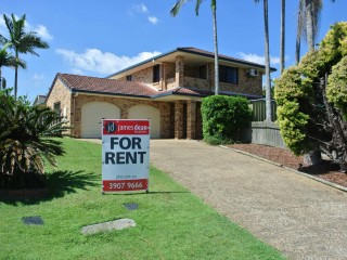 View profile: King Of The Hill - Tingalpa